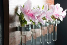 Test Tube Flower Vases 100 Test Tube Flower Test Tube Flower Arrangements Papery