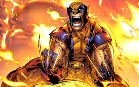 328 Wolverine Hd Wallpapers Backgrounds 1920x1080 298 01 Kb