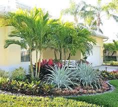 Tropical Backyard Ideas Florida Tropical Landscape Landscaping Trees Best Tropical