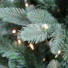 7 5 u0027 pre lit washington frasier fir slim artificial christmas tree
