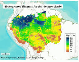 amazon basin amazon basin climate and fire global forest atlas