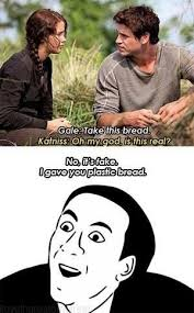 Real Funny Memes - hungergameshumor on meme people and hunger games