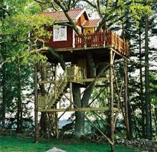 Cool Tree Houses 244 Best Tree House And Cabanas Images On Pinterest Architecture