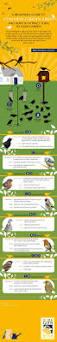 best 25 common garden birds ideas on pinterest garden birds