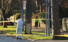 two brothers among three children killed as stolen car hits tree