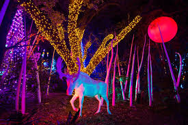 zoo lights houston prices photos tis the season for zoo lights cw39 houston