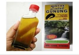pure minyak lintah asli leech oil for penis big strong and