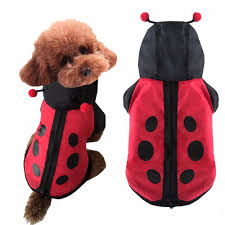 dog clothes for halloween popular puppy halloween costume buy cheap puppy halloween costume