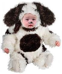 Infant Dog Halloween Costume Weird Baby Beard Baby