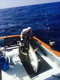 Sport Fishing Flags Deep Sea Fishing Kauai