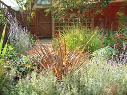 low maintenance landscaping ideas for a attractive garden design