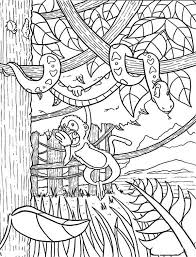 free coloring page of the rainforest rainforest coloring page coloring page