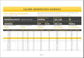 Payment Schedule Excel Template Calorie Amortization Schedule With Nutrition Tracker Word