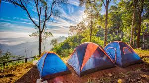 6 awesome campsites within about an hour of los angeles curbed la