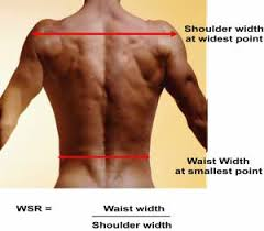 v shaped how to measure an attractive body for men correct weight loss blog