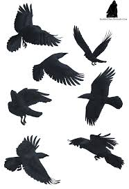 flying birds tattoo designs http th07 deviantart net fs70 pre i 2011 193 b e