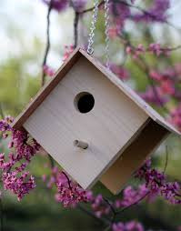 Wood Projects For Beginners Free by Free Birdhouse Plans Patterns Birdhouse Diy Birdhouse And Bird