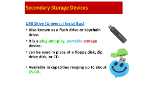 Storage Devices by Output Devices Convert From Electronic Form To Some Other Form