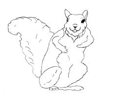 squirrel coloring pages pixelpictart com