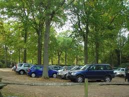 green car parks google search carpark pinterest