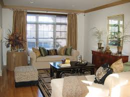 livingroom window treatments impressive design ideas windows treatment ideas for living room