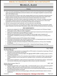 resume examples for it professionals resume example and free