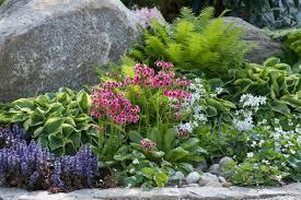 Garden Plans Zone - garden ideas border ideas perennial planting perennial
