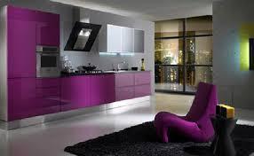 sexy color sexy color violet kitchen design ideas