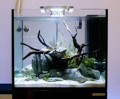 Led Aquarium Lighting Elos Led Aquarium Lighting Pricing Update Captive Aquatics An
