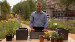 Plants For Winter Window Boxes - how to plant a window box youtube