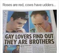 Roses Are Red Meme - roses are red cows have udders meme