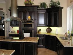 black cabinets with black appliances dark kitchen cabinets with black appliances home design ideas