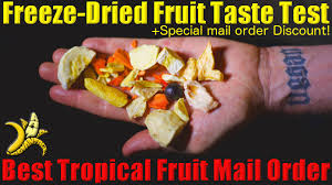 fruit by mail tropical fruit taste test best freeze dried and fresh tropical