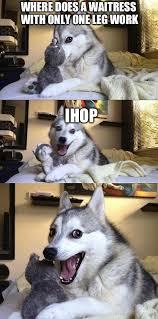 Funny Waitress Memes - best bad pun dog memes i am bored