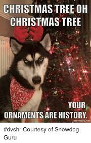 christmas tree oh christmas tree your ornaments are history