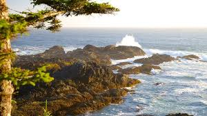 vancouver island getaways vancouver island vacations 2018 package save up to 603 expedia