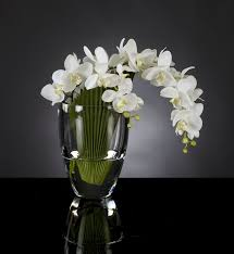 3d Flower Vase Download Flower Arrangements 3d Models Vase Palma Phal