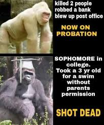 Ape Meme - from outrage to dicks out to dead celebrity the evolution of the