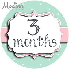 first thanksgiving onesie modish creative collective keepsakes 12 monthly baby stickers