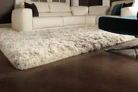 long shag rug long shag creative accents nido floor pinterest plush carpet