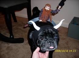 Bull Halloween Costume Handmade Halloween Costumes Bullrider Bull Costume