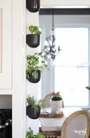 kitchen herb garden ideas 307 best vertical gardening images on pinterest vertical gardens
