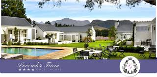 franschhoek accommodation lavender farm guest house