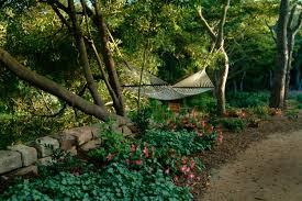 native drought tolerant plants 5 inspiring drought tolerant landscape designs