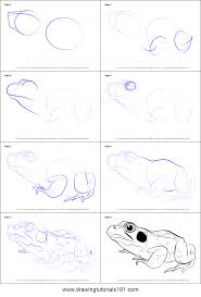 how to draw a green frog printable step by step drawing sheet
