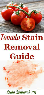 How To Remove Sauce Stains Sauce Upholstery And How To Remove Tomato Stains Upholstery Household And Household