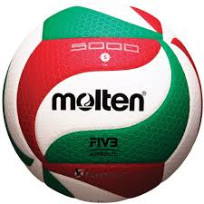 What Country Has Red White And Green Flag Amazon Com Molten V5m5000 Men U0027s Ncaa Flistatech Volleyball Red