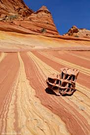 Arizona Travel Diary images Photo diary the wave vermilion cliffs national monument jpg