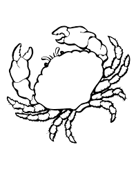 free printable crab coloring pages for kids animal place