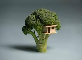 tiny toothpick treehouse imgur